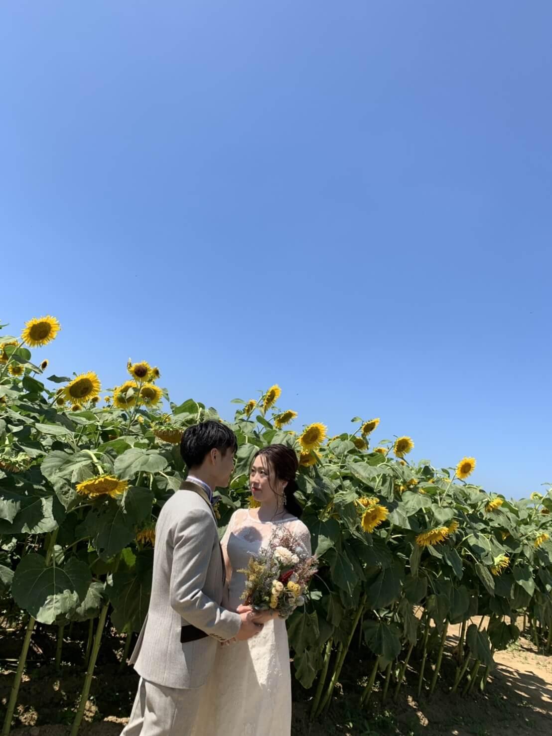 金沢のひまわり畑でウェディングのロケーションフォトを撮りました ブライダルハウスひまわり